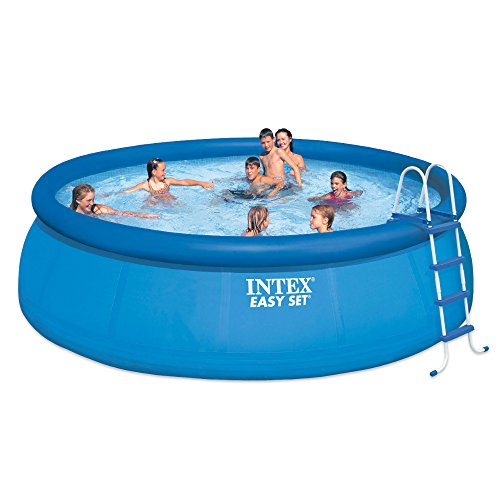 Intex 15ft X 48in Easy Set Pool Set