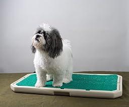 PetSafe Piddle Place Base Unit Porous Turf Indoor Dog Toilet without Cover