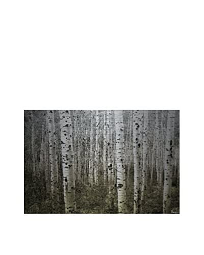 Parvez Taj Aspen Highlands Aluminum Wall Art