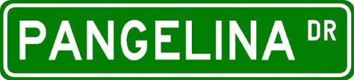 PANGELINA Street Sign ~ Personalized Family Lastname Sign ~ Gameroom, Basement, Garage Sign Novelty** ALUMINUM - Buy PANGELINA Street Sign ~ Personalized Family Lastname Sign ~ Gameroom, Basement, Garage Sign Novelty** ALUMINUM - Purchase PANGELINA Street Sign ~ Personalized Family Lastname Sign ~ Gameroom, Basement, Garage Sign Novelty** ALUMINUM (The Lizton Sign Shop, Home & Garden,Categories,Patio Lawn & Garden,Outdoor Decor)
