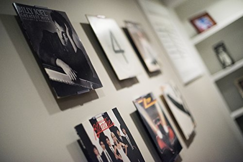 AlbumMount - NEW Wall Mount or Shelf Stand to Display Your Vinyl Records, Album Covers, or Records (Display Record compare prices)