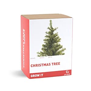 Gift Republic Grow It. Grow Your Own Christmas Tree
