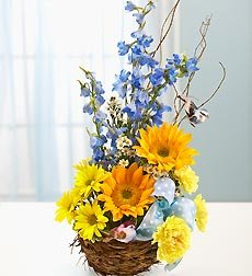 Flowers by 1800Flowers - Welcome to the Nest Baby Boy