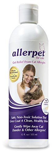 The Best Cat Breeds For Allergic Cat Lovers