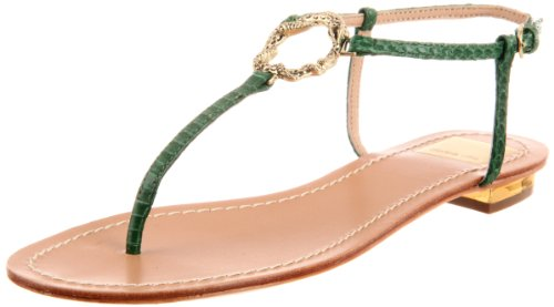 Dolce Vita Women's Banks Sandal,Green Snake,7.5 M US