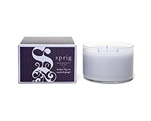 SPRIG Fragrances 3 Wick Candle - Kadota Fig & Candied Ginger