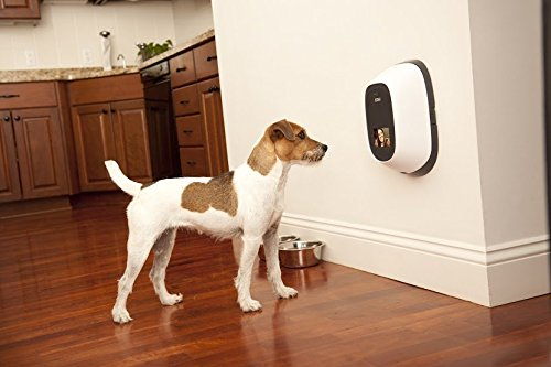 PetChatz-HD-Pet-Camera-Two-Way-AudioVideo-System-that-Dispenses-Treats-Scents-and-Provides-MotionNoise-Sensing