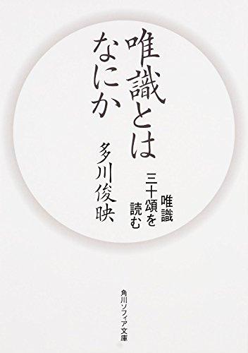 唯識とはなにか 唯識三十頌を読む (角川ソフィア文庫)
