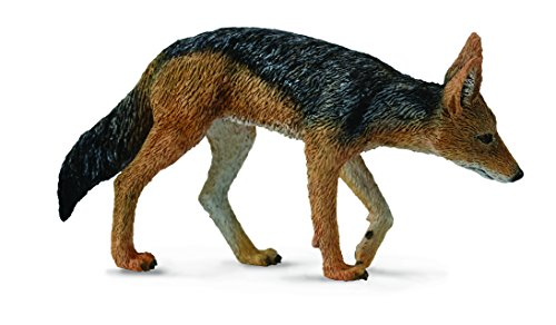 CollectA Woodlands Black-Backed Jackal #88665