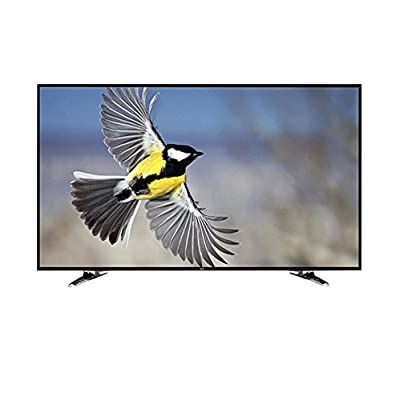 Noble Skiodo 24CV24N01 61cm (24 inches) HD Ready LED TV (Black)