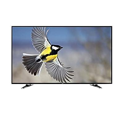 Noble Skiodo 24CV24N01 61cm (24 inches) HD Ready LED TV (Black)