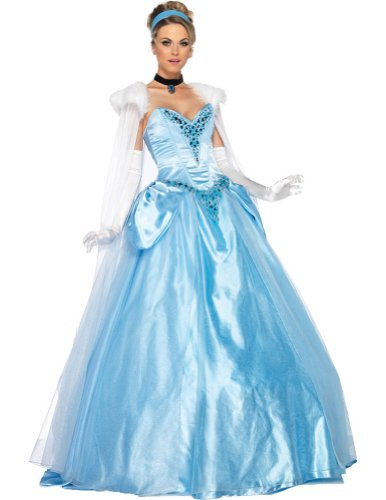 Cinderella Deluxe Adult Costume Md Adult Womens Costume