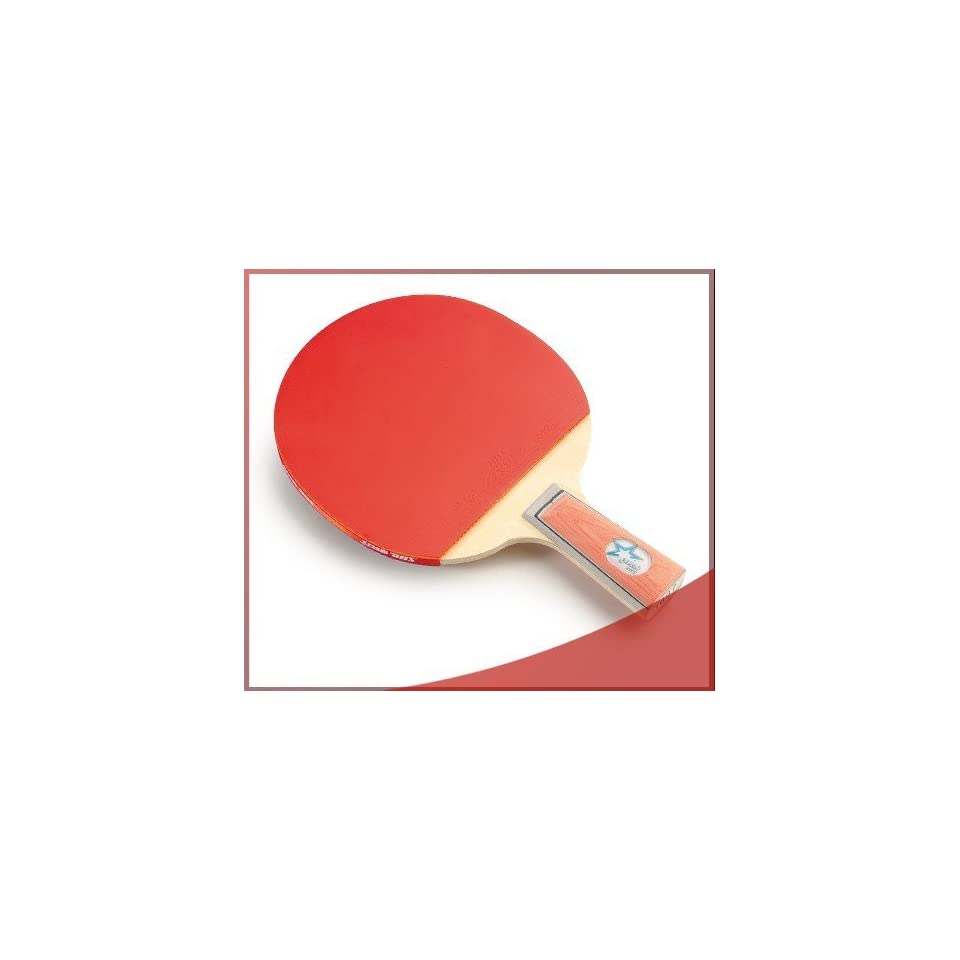 DHS X1007 (Penhold) New X Series Recreational Table Tennis Racket