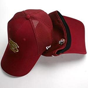 Florida State Seminoles New Era Aflex Hat by SportShack INC