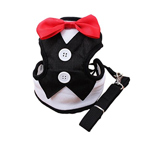 KYZ Male Female Dog Bow Vest Harness Dog Collar Leash Set For Large/Medium/Small Dog to Party Black M by KUANG YANZI (Bird Harness Medium compare prices)
