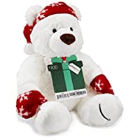 Amazon.com $150 ~ $250 Gift Card with a Holiday Teddy Bear - Limited Edition