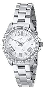 Fossil Women's AM4576 Analog Display Analog Quartz Silver Watch
