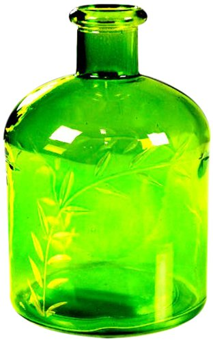 Galt International Green Glass 4 by 6-Inch Bottle with Fern Leaf Etching