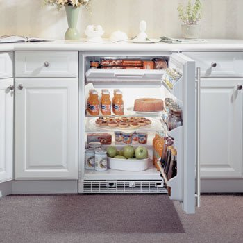 Built In Refrigerator And Freezer
