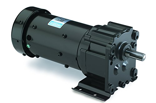 Leeson Parallel Shaft 1/6 Hp, 40 Rpm 115/230V Electric Gear Motor # M1145032