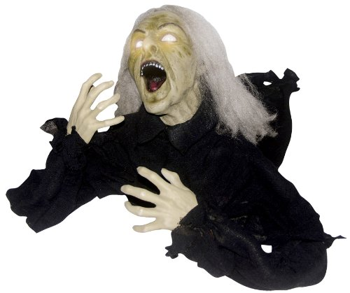 Scary Animated Groundbrker Head Turning Witch Halloween Holiday Prop