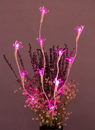 Lightshare Discount 20 Inch 12 LED Lighted Blossom Branch, Pink Lights White Branch