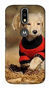 IMPACTDESIGNS Mobile Cover for Motorola Moto G4 (Multicolor)