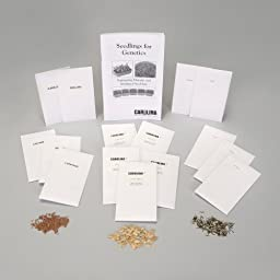 Radish, Irradiated Seed Set, 5 Packs of 50