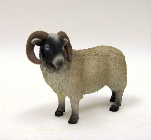 Black Faced Sheep (Ram) by Mojo