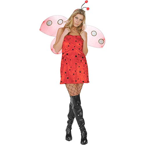 Adult Sexy Lady Bug Costume (Sz: Small/Medium 2-6)