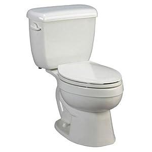 AMERICAN STANDARD 3893.016.012 Titan Pro Elongated Toilet Bowl, Bone