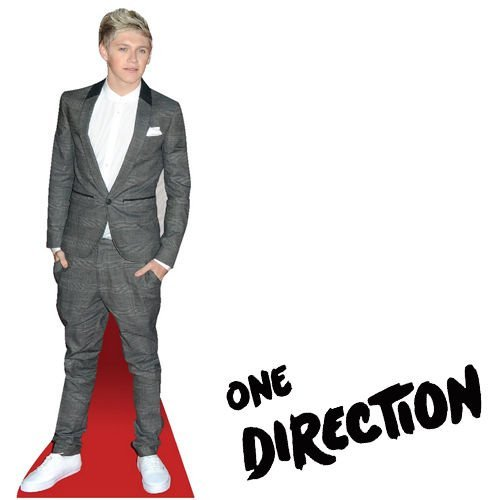 Celebrity One Direction Table Standee Desktop Standup Cutout Cardboard Masks 1d NIALL HORAN by Guilty Gadgets Ã'Â (One Direction Stand Up Cardboard compare prices)