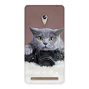 Cute Kitty Photograph Back Case Cover for Zenfone 6