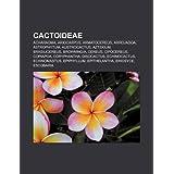 Cactoideae: Acharagma, Ariocarpus, Armatocereus, Arrojadoa, Astrophytum, Austrocactus, Aztekium, Brasilicereus...