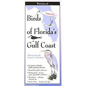 Birds of Florida's Gulf Coast (Foldingguides)