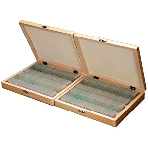 AmScope 200 Assorted Specimens of Biology Anatomy Pathology Botany Glass Microscope Prepared Slides in Wooden Boxes