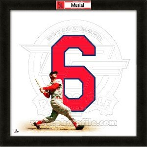 Stan Musial St. Louis Cardinals 20x20 Framed Uniframe Jersey Photo by Biggsports