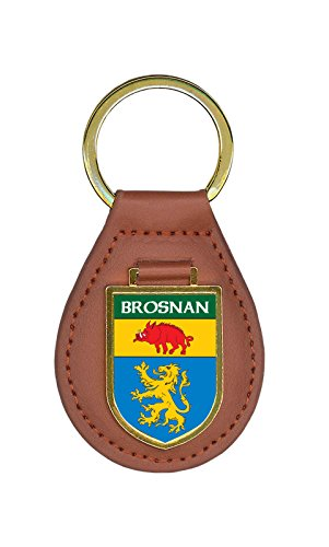 brosnan-family-crest-coat-of-arms-lot-of-1-total-key-chains