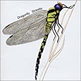 Dragonfly by Strawbs (2001-01-01)
