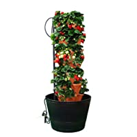 Stackable Hydroponic or Soil Gardening Tower Kit - The Vertical Container Hydroponics or Soil Growing System to Grow Vegatables, Herbs, Strawberries, Peppers, and Much More - Indoors or Outdoors - Terracotta Color Plastic Stacking Planters - Also Used in Aquaponic Systems - Comes with Easy to Use Gardening Instructions - By Mr Stacky