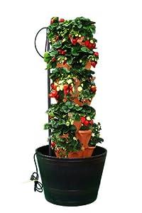 Amazon Com Mr Stacky Indoor Verical Hydroponics Tower 6 Tier Tower Patio Lawn Amp Garden