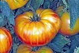 9GreenBox - Pineapple Tomato - 30 Seeds