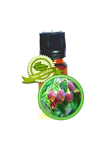 Boronia Absolute Oil - 100% PURE Boronia Megastigma - 5ml (1/6oz)