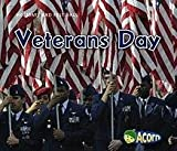 Veterans Day (Holidays and Festivals)