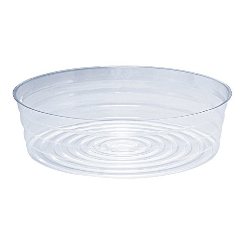 Clear Plastic Pot Saucer for Garden Pots and Bags (Top Diameter 12in.) (12 In Plastic Pot compare prices)