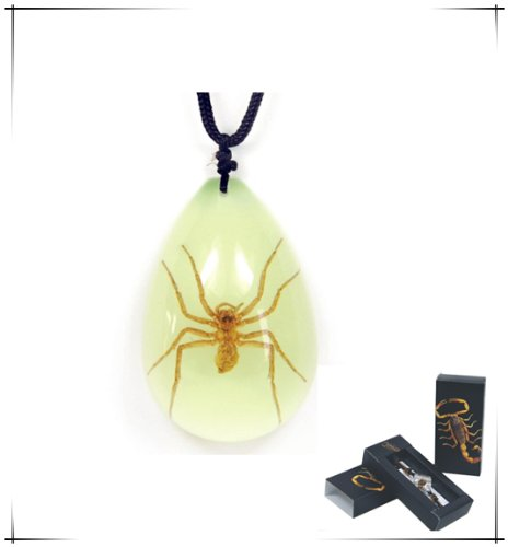 Brown Recluse Glow in the Dark Necklace Large Teardrop (Real Insect Company Necklace compare prices)