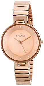 Skagen Women's SKW2227 Gitte Quartz 3 Hand Stainless Steel Rose Gold Watch