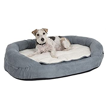Memory foam Dog letto con cuscino cilindrico Border Heavy Duty di forma ovale