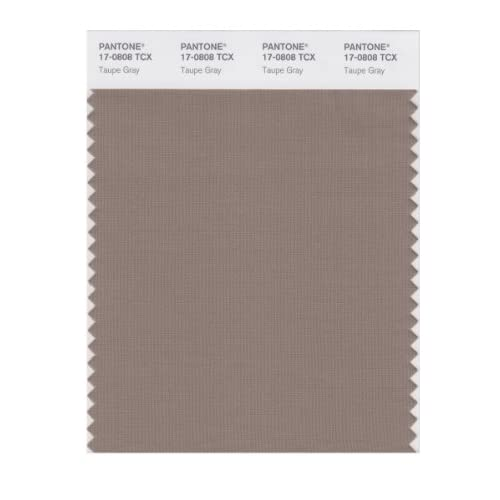 Pantone Smart 17 0808x Color Swatch Card Taupe Gray