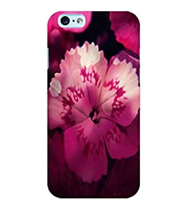 ColourCraft Flower Back Case Cover for APPLE IPHONE 6